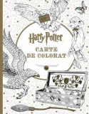 Harry Potter. Carte de colorat