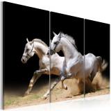 Tablou canvas 3 piese - Cai putere si viteza - 120 x 80 cm, Artgeist