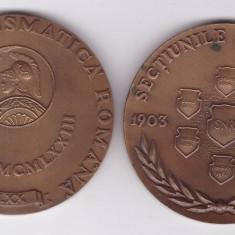 Medalie SNR Societatea Numismatica Romana 1973