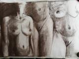 Cumpara ieftin Grafica Torsuri carbune, format 100x70 cm, Portrete, Impresionism