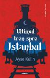 Ultimul tren spre Istanbul (ebook)