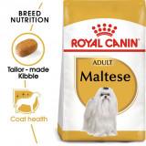 ROYAL CANIN Maltese Adult hrană pentru câini adulţi rasă malteză 1,5 kg