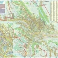 Harta Municipiului Iasi (sipci de plastic)/***