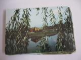 Carte postala - Sfantu Gheorghe (Parcul de agrement)