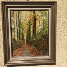 Tablou vechi,pictura in ulei pe panza,peisaj de toamna, Arbori, Altul