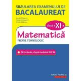 Simularea examenului de bacalaureat. Matematica. Clasa a XI-a. Profil tehnologic. 30 de de teste, dupa modelul M.E.N., autor Ovidiu Badescu