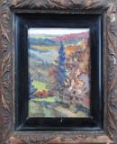 Peisaj de munte - semnat  I.Isac