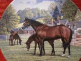 BRADEX - FARFURIE DECORATIVA PORTELAN ENGLEZESC ROYAL DOULTON - CAI