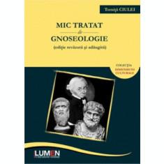 Mic tratat de gnoseologie - Tomita CIULEI
