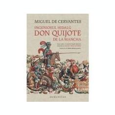 Ingeniosul hidalg Don Quijote de la Mancha - Miguel Cervantes