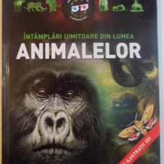 INTAMPLARI UIMITOARE DIN LUMEA ANIMALELOR , 2011