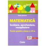 Matematica. Invatare, aprofundare. Teste cls a VI-a - Nadia Barbieru