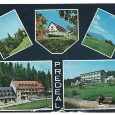CPI B 11542 CARTE POSTALA - PREDEAL, MOZAIC, Circulata, Fotografie