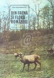 Din fauna si flora Romaniei. Lecturi stiintifice