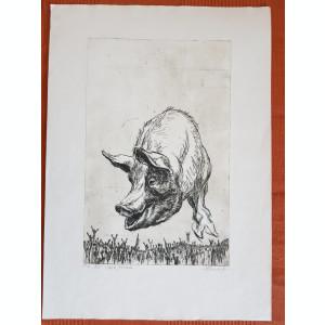 Slava Porcului, gravura, Marcel Chirnoaga, Exemplar de Autor III din V, 32x51cm