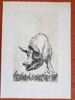 Slava Porcului, gravura, Marcel Chirnoaga, Exemplar de Autor III din V, 32x51cm foto