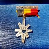 C604-I-Insigna veche Cruce L'Amour Limmaculee Conception-Eu sunt Regina Raiului.