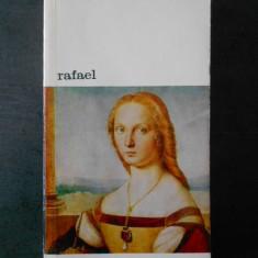 Remo Braca - Rafael