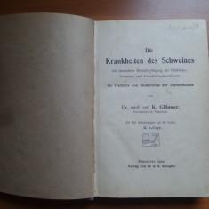 Die Krankheiten des Schweines – Dr. med. vet. K. Glasser