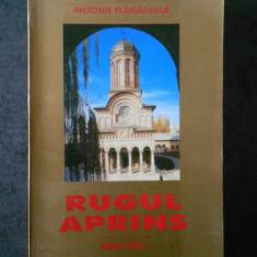 ANTONIE PLAMADEALA - RUGUL APRINS
