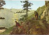 CPIB 16024 CARTE POSTALA - BAILE HERCULANE. VALEA CERNEI, RPR, Circulata, Fotografie
