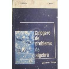 Culegere de probleme de algebra pentru licee (E.D.P.)