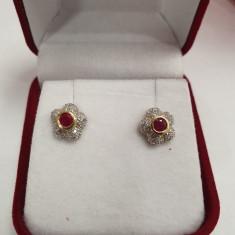 Cercei din aur alb 14K cu rubine si diamante