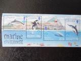 Gibraltar-fauna marina-bloc nestampilat