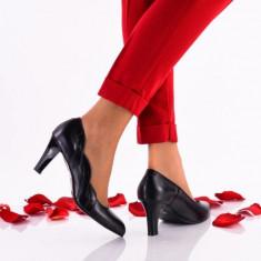 Pantofi dama eleganti din piele Ninna Art A42