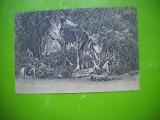 HOPCT 148 K  BAILE LUI APOLLO  VERSAILLES   -  FRANTA-NECIRCULATA