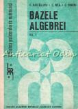 Bazele Algebrei I - C. Nastasescu, C. Nita, C. Vraciu