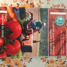 Cultivati practic si eficient legume in Romania vol.I M.G.Jidavu