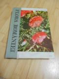 I. SIMIONESCU--FLORA ROMANIEI