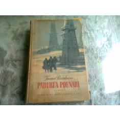 PADUREA POENARI - IOANA POSTELNICU