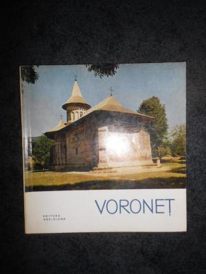 PETRU COMARNESCU - VORONET foto
