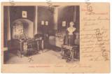 4055 - SALONTA, Bihor, Litho, Romania - old postcard - used - 1900, Circulata, Printata
