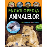 Enciclopedia animalelor | Laura Aceti, Chiara Brizzolara, Didactica Publishing House