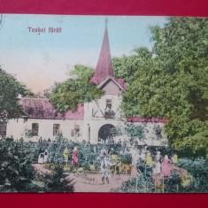 Bihor Tinca, Circulata, Printata