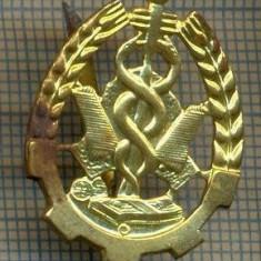 Y 1820 INSIGNA - MILITARA -SEMN DE ARMA - INTENDENTA -PENTRU COLECTIONARI