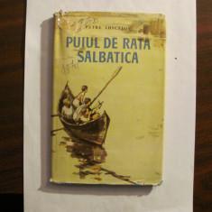 """AF - P LUSCALOV """"Puiul de Rata Salbatica"""" / Ilustratii Iura (Iurie) Darie / 1961"""