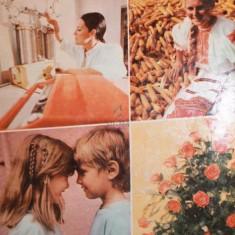 ALMANAHUL FEMEIA , 1990 - ***