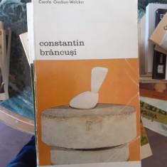 Constantin Brancusi – Carola Giedion Welker
