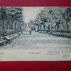Iasi Gradina Copou, Circulata, Printata