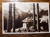 CABANA PESTERA - MUNTII BUCEGI - ANII 1950 - SEPIA