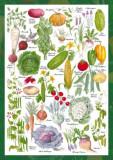 Puzzle Schmidt - 1000 de piese - COUNTRYSIDE ART: VEGETABLE GARDEN