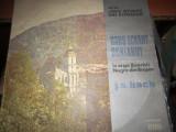 orgi istorice n17