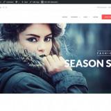 Magazin Online WebSite Only 450€