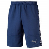 Pantaloni scurti barbati Puma Active Hero 59498350