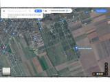 teren pret bun intravilan cu PUZ, in Sampetru livada