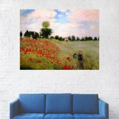 Tablou Canvas, Peisaj Camp Cu Maci - 40 x 50 cm